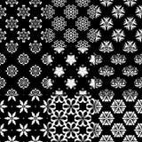 Ornamentos florales blancos y negros Colección de modelos inconsútiles Imagen de archivo libre de regalías