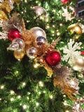 Ornamentos Lluvia-moldeados de la Navidad en árbol al aire libre Imagen de archivo