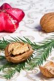 Ornamentos, nueces y abeto de la Navidad Fotografía de archivo