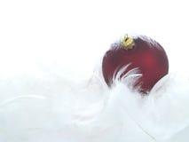 Ornamentos rojos en plumas Fotos de archivo