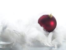 Ornamentos rojos en plumas Fotografía de archivo