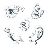 Ornamentos vectorizados, elementos del diseño Imagen de archivo libre de regalías