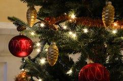 ornaments Imagens de Stock