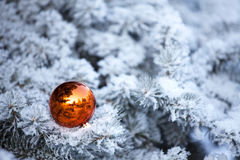 Ornaments ball Stock Photo