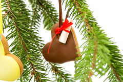 ornaments hanging on fir branch Royalty Free Stock Photography