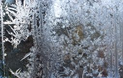 Ornaments on the window created by frost. Frozen water on the window creates silver beautiful odecoration ornaments Royalty Free Stock Image