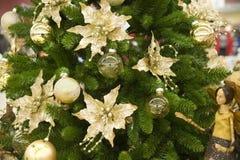 ornamentu futerkowy drzewo Fotografia Royalty Free