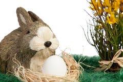 Ornamentu królik z białym jajkiem Zdjęcia Royalty Free