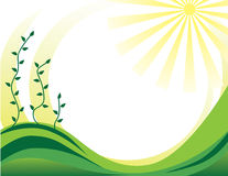 ornamentu rośliny wiosna ilustracji