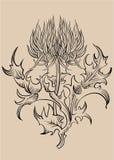 ornamentu wektora royalty ilustracja