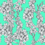 Botanical floral flower pencil drawing sketch seamless ornate pattern texture on bright blue background for invitations royalty free illustration