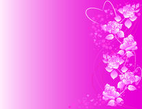 Ornate background with roses and heart shapes. Royalty Free Stock Photography