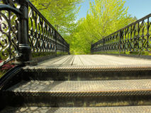 Ornate black steel railings Royalty Free Stock Image