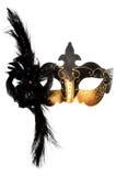 Ornate carnival mask Royalty Free Stock Image