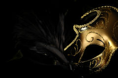 Ornate carnival mask Royalty Free Stock Image