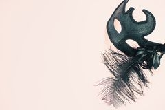 Ornate carnival mask light background stock photo