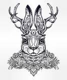 Ornate decorative jacalope magical creature art. Royalty Free Stock Photo