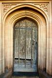 Ornate door Stock Images