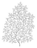 Ornate, elegant curly vines illustration Stock Image