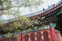 Ornate facade and roof of Chinese building. Stock Photos