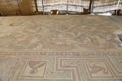 Ornate floor mosaics at the Basilica of Moses), Mount Nebo, Jordan Stock Photos