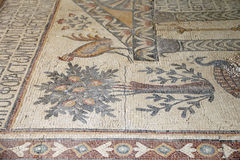 Ornate floor mosaics at the Basilica of Moses), Mount Nebo, Jordan Royalty Free Stock Photography