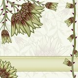 Ornate floral background. With space for text Royalty Free Stock Image