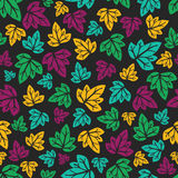 Ornate floral seamless texture, vector. Seamless pattern with leaves. Vector illustration. Hand-drawn floral background Stock Image