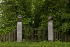 Ornate Gates. Detail of Ornate Gates and Tree Lined Driveway of a Country Estate Royalty Free Stock Photo