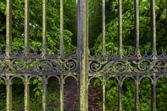 Ornate Gates. Detail of Ornate Gates and Tree Lined Driveway of a Country Estate royalty free stock images