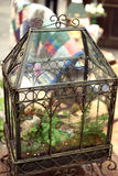 Ornate glass greenhouse Stock Photography
