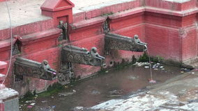 Ornate historical dragon form water tap  in Katmandu stock video footage