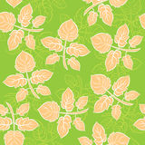 Ornate leaves - Seamless vector trefoil ornament Royalty Free Stock Photography