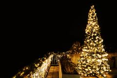 Ornate and lighted Christmas tree in the garden. Royalty Free Stock Image