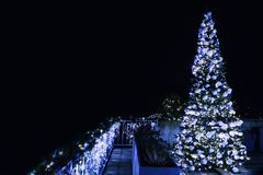 Ornate and lighted Christmas tree in the garden. Xmas tree and lighting of the house at Christmas time Stock Photo