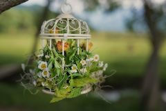 Ornate natural decor for outside setups with dried flowers in bird cage. Horizontal shot of wedding decor for gardens and outdoors setups with white vintage Royalty Free Stock Photography