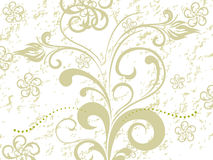 Ornate pattern floral background Stock Images