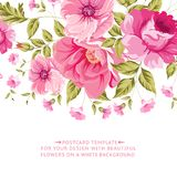 Ornate pink flower decoration with text label. Stock Photography