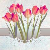 Ornate pink frame decoration. EPS 10 Stock Photography