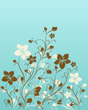Ornate scroll floral design Stock Image