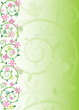 Ornate spring floral. Green and pink ornate spring floral vector Stock Photo