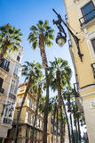 Ornate Street Lamp and Palm trees against a bright blue backgrou Royalty Free Stock Photography