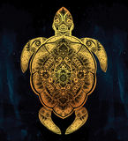 Ornate turtle in tattoo style. Royalty Free Stock Images