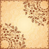 Ornate vector doodle flowers background Stock Photos