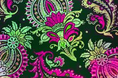 Unusual botanic paisley pattern. An ornate and very elaborate pattern of flowers and leaves Royalty Free Stock Image