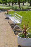 Ornate white bench and flower pots. Garden on background Royalty Free Stock Image