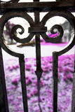 Ornate wrought iron fence with arrow, Rockville, Connecticut. Stock Photo