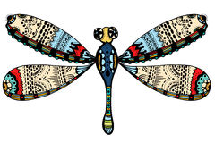 Ornate Zentangle Dragonfly Royalty Free Stock Image
