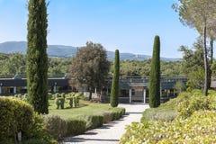 Ornellaia, Tuscany, Italy Royalty Free Stock Photo
