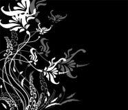 ornement граници флористическое Стоковые Фотографии RF